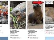 Tailwind Review Unleashing Novel Powerful Pinterest Strategy