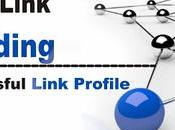 Link Building Build Successful Profile