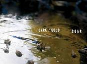 SOAR 'dark/gold' Album Review