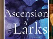 Three Novels Inspire You: Writing Desk, Ascension Larks, Name Unknown