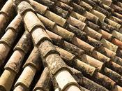 Roofing Different Areas World