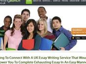 Writingbunch.co.uk Review Essay Writing Service Writingbunch