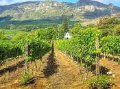 Child Friendly Wine Farms Visit Cape Winelands, South Africa