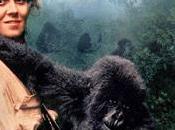 Queen Jungle