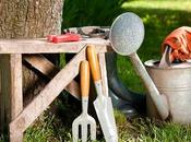 Different Types Horticultural Tools Used Gardening