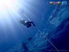 Insightful Weekend Prelude Free Diving