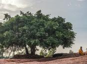 Exploring Ethiopia: Best Worst Lalibela
