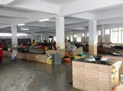 Udipi Fish Market