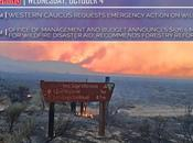 Director Mulvaney Responds Western Caucus Calls Forestry Action Congressional