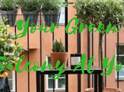 Your Green Home Balcony Easily Finger Tips (Dream Come True) PLus