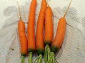Finger Carrots