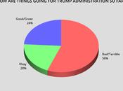 American Public Opinion Trump