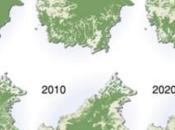Global Tree Cover Loss Rose Percent 2016