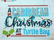 Festive Menu Turtle