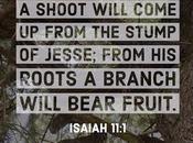 Thirty Days Jesus,