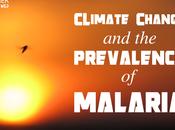 Climate Change Prevalence Malaria