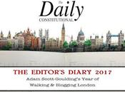 Daily Constitutional Editor's Diary 2017 January: Walks, Chips, Birthdays, Bowie, V&A #UrbanGeology