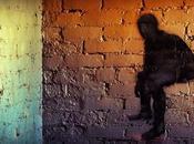 Life Shadow