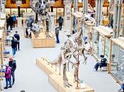 Half Term Trip Oxford University Museum Natural History