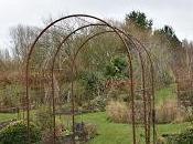 Wintery Ellicar Gardens