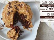 Sugar Free Dark Chocolate Almond Butter Cake (gluten Free, Vegan)