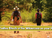 Positive Effects Wilderness Your Health