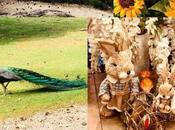 Home Decor Ideas Spring Time (and Easter)