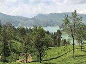 Lanka: Pearl Indian Ocean, Part Guest Post Gretchen Woelfle