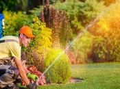 What Lawn Care Company Christiansburg Before Hiring