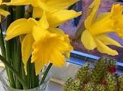 Retrograde Release Spring Springing!