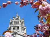 Around #London #Photoblog… Here's What We've Look Forward #Spring