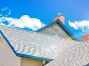 Best Roofing Options Your Home Business