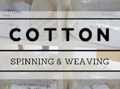 Spinning Weaving Island Cotton Pursuits
