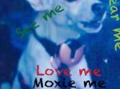 Moxie Smartphones Dogs Future Tech Here