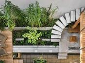 Garden Plans 2018