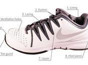Anatomy Tennis Shoe