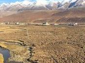 2017: Tibetan Adventure!