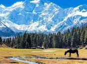 Karakoram 2018: Mike Horn Attempt Nanga Parbat This Summer