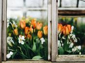 Garden Houses Most Beautiful Designs 2018