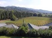 Exploring Super Tuscans Marcanda