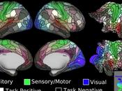 Fundamental Advance Brain Imaging Techniques.