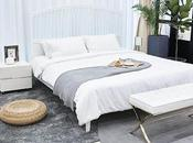 Comfort Style Contemporary Bedroom