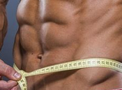 Burners Better Bodybuilding Cycles Weight Loss!