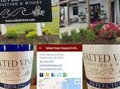 DelMarVa Coast's Salted Vines Vineyard Winery