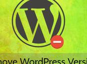 Hide Remove WordPress Version Number
