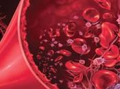 Treatment Hemolytic Uremic Syndrome (HUS) Ayurveda