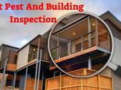 Inspection Mandatory Before Purchase Building?