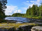 Taiga Biome: Location, Climate, Temperature, Plants Animals