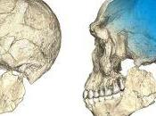 Where Modern Humans Evolve? It's Complicated