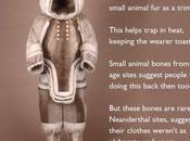 Chimps Like Loud Human Evolution News Update